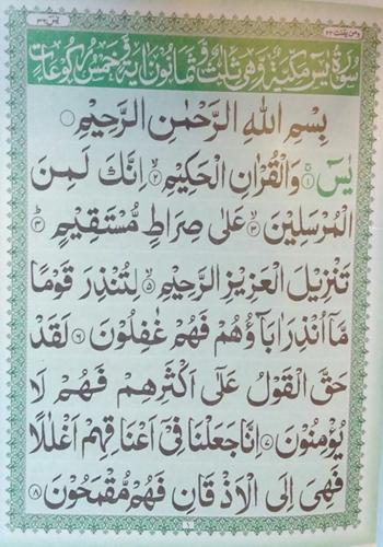 Surah Yasin Large Arabic Text Paper Gaba