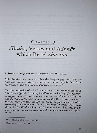 Jinn, Magic & the Evil-Eye: Dr  Tayyar & Shaykh Mubarak